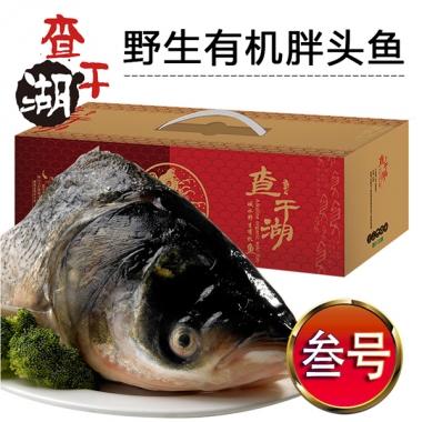 叁号-查干湖野生有机胖头鱼提货券