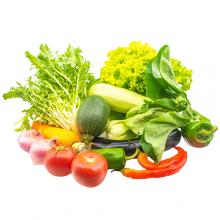 首农特菜A礼盒/绿色蔬菜/首农蔬菜基地直供