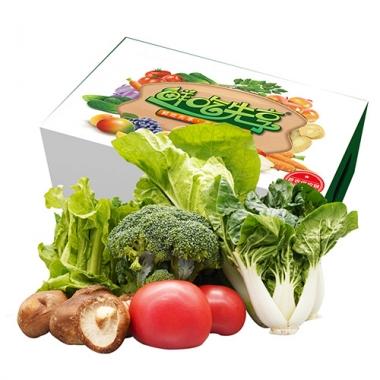 首农特菜D礼盒/绿色蔬菜/首农蔬菜基地直供